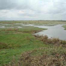 Sakumo Lagoon