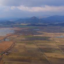 rice paddies located south from the mouth of Dongcheon Estuary