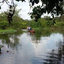 Madre Vieja La Marina Ramsar Laguna de Sonso