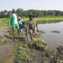 Rio Kpatchèz ( plaine de Wamounou)