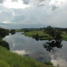 Rivière Likouala-aux-herbes