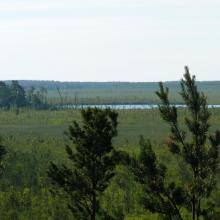 Cheremske Bog and Lake Cheremske