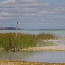 View south along west shore, Lac Tsimanamsotsa.