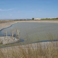 Atanasovsko Lake - near the north part of the Atanasovsko Lake, next to the Salt Pans