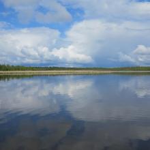Gammelstadsviken nature reserve