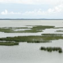 Gardno Lake
