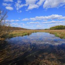 Rivers in Bila River Ramsar Site