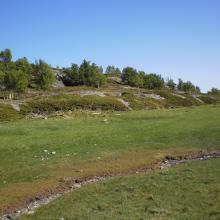 Beach meadow at Karlsøya