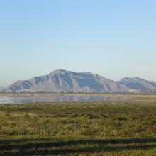 El Hondo. Embalse de Poniente- Charca sur; al fondo Sierra de Callosa del Segura