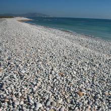 Prat de Cabanes-Torreblanca. Cordón litoral de cantos rodados