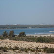 Lagunas de La Mata y Torrevieja. Panorámica de la laguna de La Mata