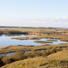 Vue du Parc Ornithologique du Marquenterre