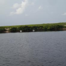 Embouchure de Ndougou, site des pélicans