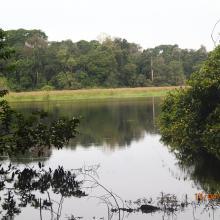 Zone d'Akaka/Rembo-Eshira