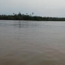 Fleuve Kouilou