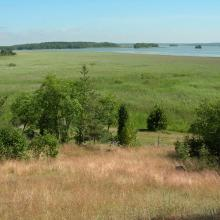View from Söderfjärden nature reserve