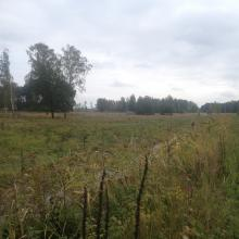 Sörby pasture nearby east Kvismarern.