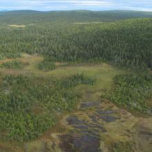 Landscape view Torneträsk-Soppero nature reserve.