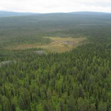 Landscape view Torneträsk-Soppero nature reserve