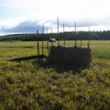 Hay drying rack