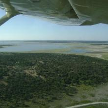View of the eastern edge of Etosha Pan near Namutoni.