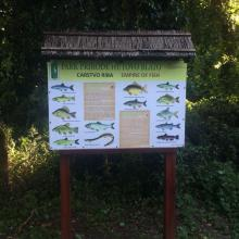 Educational trail