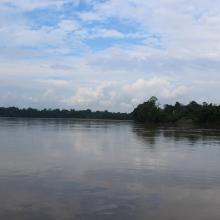 Río Aguaríco (Reserva de Producción de Fauna Cuyabeno)