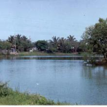 Panorámica de Laguna La Colorada. Lluvias 1999.