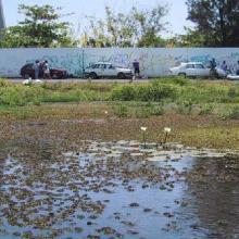 Laguna Malibrán