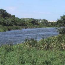 Laguna D