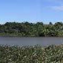 Vista panorámica de Laguna Tarimoya. Junio 2003