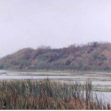 Laguna Tarimoya. Agosto 2002