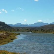 Estero Las Ánimas