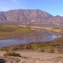 Estero del Rincón