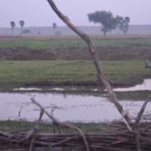 Moyen Niger II