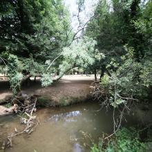 O. Tizguite en aval d'Ifrane : oued ombragé et à écoulement lent