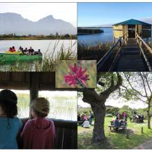 Top Left: Boat trip on Rondevlei; Top Right and Bottom Left: Bird hides at Rondevlei; Bottom Right: Picnic Area at Rondevlei; Centre: Erica Verticillata (Cape Flats Erica) classified as  'Extinct in the Wild', and now growing at  Rondevlei