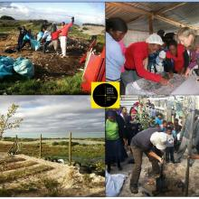 Friends and Neighbour Initiative, the 'Other side of the Fence' at Village Heights informal settlement on the western boundary of the FBNR.  The  FBNR boundary  and interface zone between the settlement and the reserve can be seen in the photo on the bottom right, with the other photographs showing