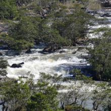 Eau rapide et rocailleux de la rivière