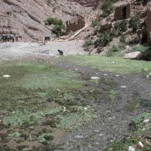 Source en aval des gorges