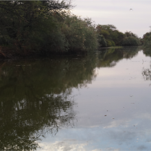 image du canal du crocodile
