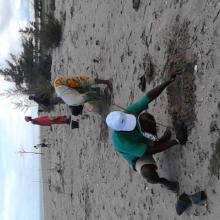 Lutte contre l'érosion côtière avec la participation des communautés