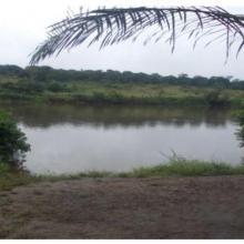 Fleuve Nyanga et ses Environs