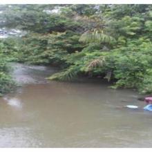 Rivière Louvasi en aval