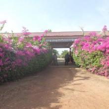 Entrée du centre écotouristique de Bagré