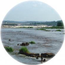 Les affleurements rocheux des rapides du Cong o-djoué