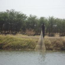 Photo 4 : Un pêcheur en pleine prise de poisson