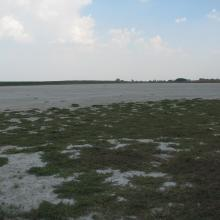 Salt lakes regularly dry out in summer