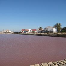 Salinas de Santa Pola. Cristalizador (laguna rosa)