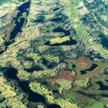 Islas del Delta del Paraná cerca de puerto Gaboto
